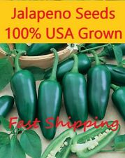 Jalapeno Seeds 50 PREMIUM hand selected seeds Free shipping!!! NON-GMO