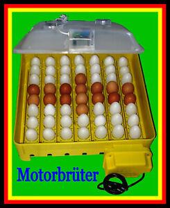 101) Inkubator/Brutkasten/Brutmaschine/Brutapparat/Incubator/Incubadora/Couveuse