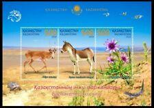 Kazakhstan 2019. Fauna. Pearls of Kazakhstan. Barsa-Kelmes Nature Reserve. Flora