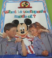What is Toothpaste Made Of? (Mickey Wonders Why)
