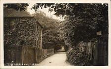 Winchmore Hill. In Winchmore Hill Woods.