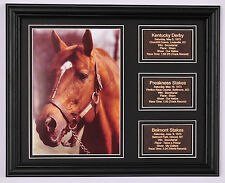 Secretariat Triple Crown photo w/ saddle leather statistic plaques for each race