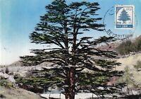 MXC52) 1960 Postes Liban, Lebanon, the Cedars, maximum card