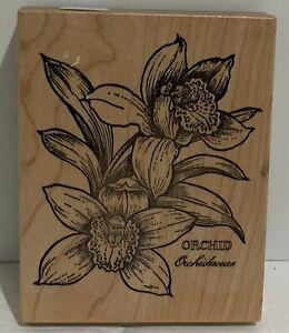 PSX ORCHID Botanical Floral Flowers K-565 Rubber Stamp