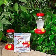 Spring Garden Garden Collection Hanging Hummingbird Bird Feeder - 6.75 Inches