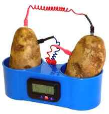 Potato Clock, Fruit Clock with No Mess Holder
