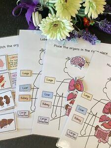 Educational Worksheet - My Anatomy Match & Learn -  EYFS/ Preschool/ Toddler/SEN