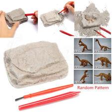 Dinosaur Excavation Kit - Dig Your Own History Skeleton Model Kids Science Toy