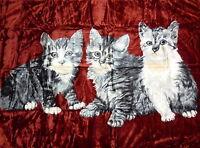 Kuscheldecke Tagesdecke Wohndecke Decke Plaid Katzen Motiv IV - rot 160x200cm