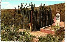 POSTCARD BOOTHILL GRAVEYARD CEMETERY TOMBSTONE ARIZONA CHINA MARY MRS AH LUN