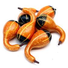 6x Deko Kürbisse Flaschenkürbisse 10cm groß, künstlich, Früchte !!!