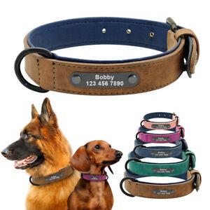 Personnalisé collier de chien en cuir rembourrage doux Collier gravé pour chien