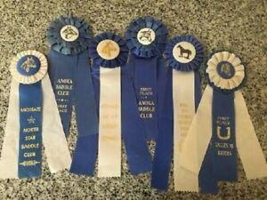 BLUE & WHITE RUFFLED HORSE SHOW RIBBONS (6)