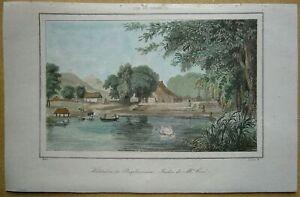 1848 print PAMPLEMOUSSES BOTANICAL GARDEN, MAURITIUS, INDIAN OCEAN (#7)