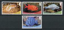 Ascension Island 2013 MNH Shallow Marine Surveys Group 4v Set Fish Fishes Stamps