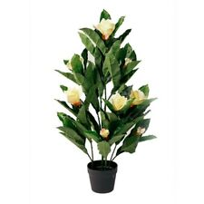 Botanica Artificial Magnolia Plant by Spotlight