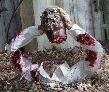 Halloween Decoration   Fridge Magnet   Zombie Severed Head    Walking Dead #1