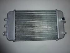 Radiatore origine motorrad Gilera 50 RCR perimetrale 2006 86193R Nuovo