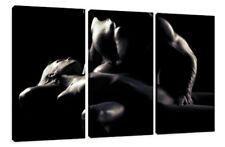 FINE ART Print auf Leinwand, Visario, Mann & Frau, Erotik, 160 x 90 cm, 3 Teile