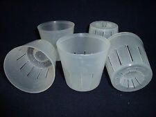 5 pcs. Clear Plastic Pot 3 inch,Orchid,Phalaenopsis,Herb,