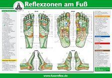 Reflexzonen am Fuß (2 Tafeln A4) Hanne Marquardt