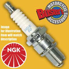 Triumph Speed Triple 10mm Plug 2003 4 NGK Iridium Spark Plugs