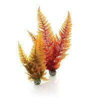 Biorb acquario piante facile-Autunno FELCE, medio.