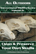 Instructional Wildlife Serie Clean & Preserving Skulls Lure by Alan Probst (Dvd)