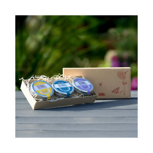 Seedball British Wildflower Gift Sets - Perfect for Gifting