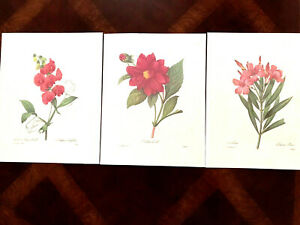 P. J. Redoute Floral Prints Lot Of 3