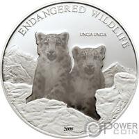 UNCIA UNCIA Snow Leopard Endengered Silver Coin 500 Togrog Mongolia 2008