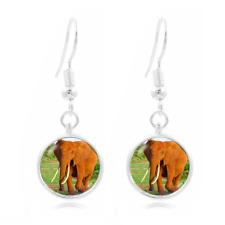 Elephant Animal Photo Art Glass Cabochon 16mm Charm Earring Earring Hooks