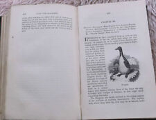 Natural History Penguin Antiquarian & Collectable Books
