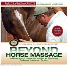 Beyond Horse Massage Wall Charts Easy-To-View Wall Charts Jim Masterson