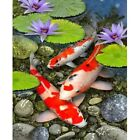 Diamond Painting DIY Koi Fish and lotus 5D Full Drill Embroidery Room Decor Gift