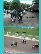 """2 Giacomo 2005 Belmont Stakes Horse Racing 8"""" by 10"""" Photos #2"""