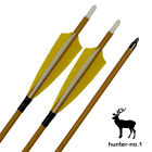 """Feather Carbon Arrows Spine 500 Archery Arrows for Recurve and Compound Bow 30"""""""