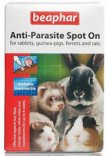 Beaphar Anti Parasite Spot On Rabbit Guinea Pig Rats Ferrets Lice Fleas - 2 Pack