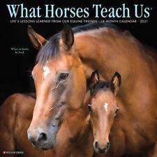What Horses Teach Us 2021 Wall Calendar (Free Shipping)