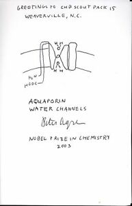 2003 NOBEL PRIZE CHEMISTRY ORIGINAL DRAWING  AGRE OF AQUADORIN WATER CHANNELS