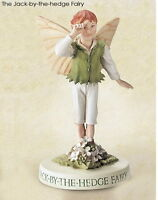Retired Cicely Mary Barker Jack-By-The-Hedge Flower Fairy Ornament Figurine NIB
