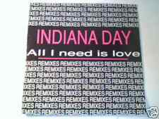 """INDIANA DAY All i need is love the remixes 12"""" GAM GAM"""