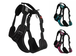 Rukka DOG Solid Harness Two Buckles & Durable Grab Handle Reflective HoundHeadz