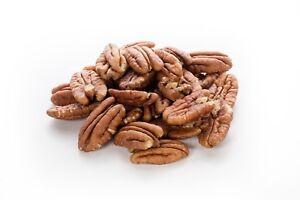 Sunburst Raw Whole & Fresh Pecan Nuts Premium Quality