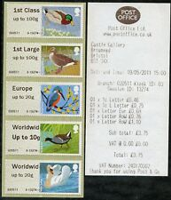 WINCOR TII BIRDS 3 III COLL STRIP/5 GAP ERROR LARGE WW to10g FS16v-20v POST & GO