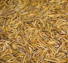 5 LBS BINESHII FAMOUS GOURMET WILD RICE HAND HARVESTED, WOOD PARCHED ALL NATURAL