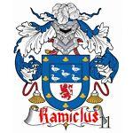 Kamiclus11