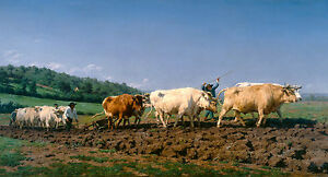 Rosa Bonheur - Ploughing in Nevers, Cows, Cattle, Cow Poster, Art Canvas Print
