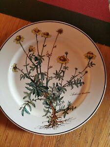 Villeroy boch botanica teller
