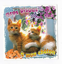 CHAT Chatons CHATS carte postale n° 6028/72 Gros bisous à mon chaton